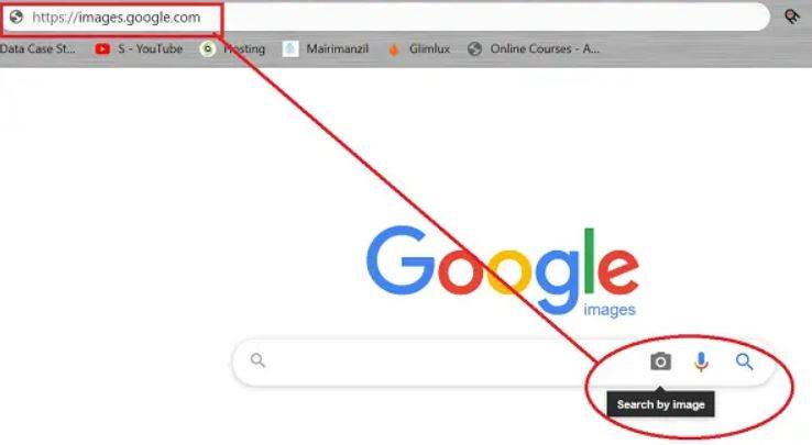 How Google's Image Reverse Search Works ?