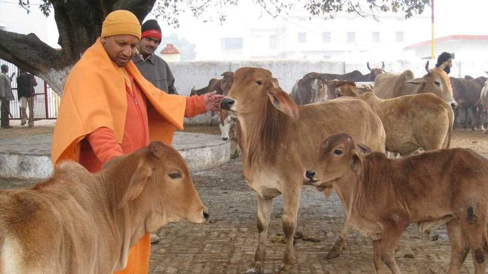 Who is Yogi Adityanath?