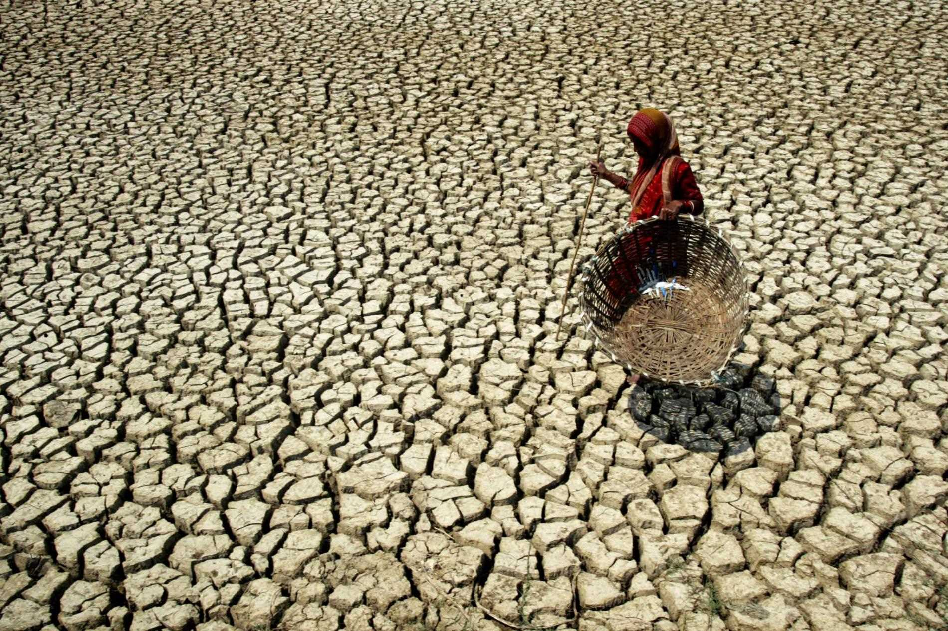 Global Warming: Worrisome Issue for India