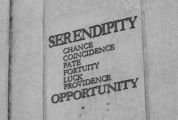 Life and Serendipity