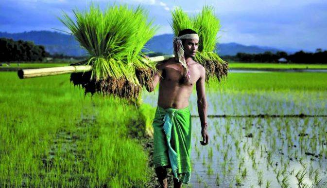Time For Change In Agriculture Export Policy