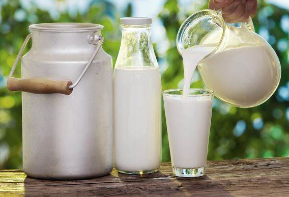 Top Alternatives Of Milk In Case You Do Not Wish To Drink