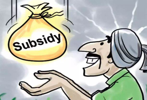 Types Of Subsidy We Need To Know